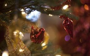 Picture lights, toys, tree, new year, prazdnik