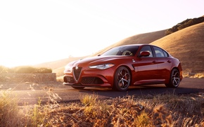 Picture car, Alfa Romeo, red, Four-leaf clover, Giulia