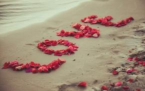 Picture sand, beach, love, romance, petals, love, beach, sea, romantic, sand, sweet, petals