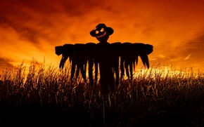 Picture field, night, scarecrow