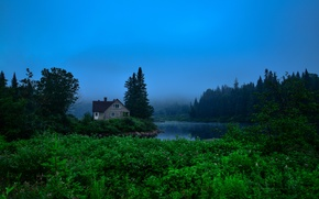 Wallpaper greens, forest, water, trees, fog, house, Canada, river, the bushes, Jacques-Cartier Park