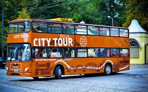 Picture orange, bus, MAN, two-storey, Riga city tour, Double Decker