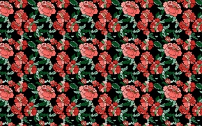 Picture flowers, pattern, peonies