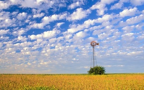 Picture field, the sky, clouds, windmill