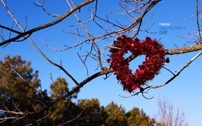 Wallpaper holiday, Valentine's day, love, romance, heart, love