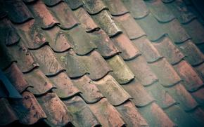 Picture roof, SKAT, Sweden, clay, tile, roof