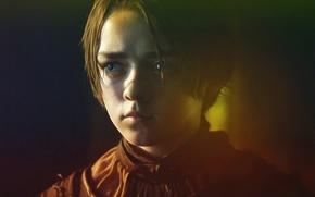 Wallpaper portrait, Arya Stark, Maisie Williams, art