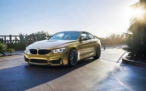 Picture car, BMW, Vorsteiner, sun, F82