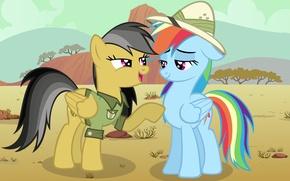 Picture Rainbow Dash, My little pony, MLP, Daring Do, MLP:FIM