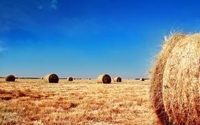 Wallpaper field, the sky, bales, straw