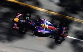Picture Racer, Monaco, Formula 1, Red Bull, Sebastian Vettel, Champion, RB10