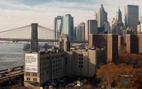 Picture bridge, building, New York, Brooklyn, USA, USA, bridge, Brooklyn, New York