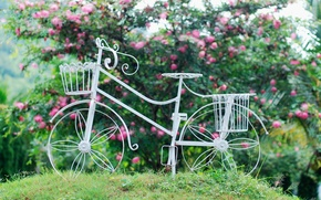 Picture white, leaves, flowers, bike, background, widescreen, Wallpaper, mood, wheel, wallpaper, flowers, basket, widescreen, background, full …