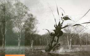 Wallpaper trees, blot, Treatment