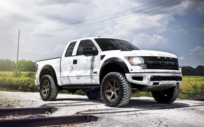 Picture white, the sky, clouds, rails, Ford, white, Ford, Raptor, pickup, Raptor, F-150, SVT, camouflage pattern