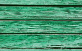 Picture green, wood, pattern
