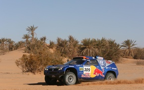 Picture sand, palm trees, Volkswagen, Touareg Race