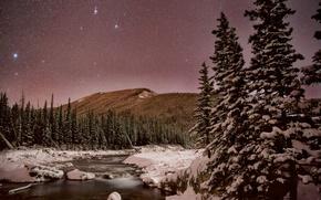 Picture winter, the sky, stars, snow, trees, mountains, night, river, Canada, Albert, Kananaskis