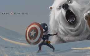 Picture snow, bear, art, shield, captain america