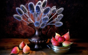 Picture plant, pitcher, fruit, still life, pear