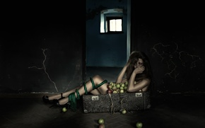Picture girl, apples, suitcase, legs