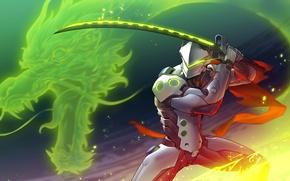 Picture Game, Blizzard Entertainment, Overwatch, Genji