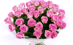 Picture flower, flowers, roses, bouquet, pink, beautiful