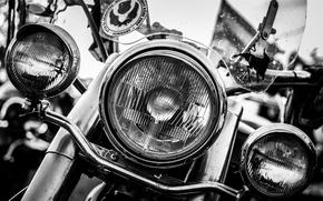 Picture white, black, Harley-Davidson