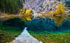 Picture forest, trees, nature, lake, reflection, stones, photo, mountain