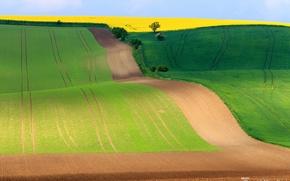 Picture the sky, field, spring, Czech Republic, South Moravian region