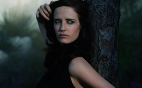 Picture forest, nature, photo, tree, 2006, Eva, Germany, Celebrity, Eva Green, Greg Williams, Green