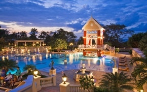 Picture palm trees, mood, the ocean, the evening, pool, exotic, Suite