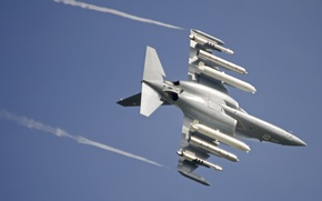 Picture The Yak-130, combat training, flight, the plane