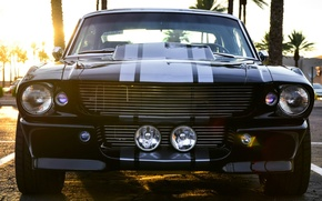 Picture Mustang, Ford, Shelby, GT500, Black, Muscle car, Super Snake, American car