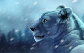 Picture background, figure, predator, blur, art, lioness