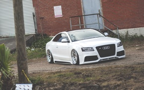 Picture Audi, Audi, white, low, stance