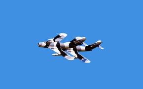 Wallpaper The sky, Flight, Aviation, Camouflage, jet fighter, The MiG-17, Two, Mikoyan, Fresco, Gurevich, Aerobatics