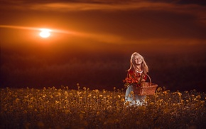 Picture field, sunset, flowers, smile, mood, basket, girl