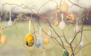 Picture branches, holiday, eggs
