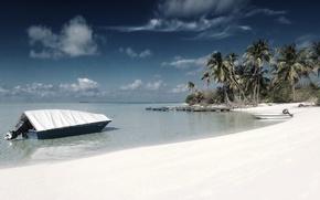 Wallpaper palm trees, shore, 157, boat