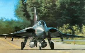 Picture figure, fighter, You can, art, Draken, the Sweden