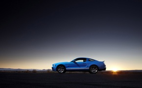 Wallpaper Ford Shelby, sunsets, landscapes, photo, machine, ford shelby gt500 cars