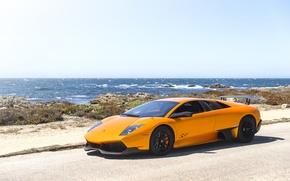 Picture Lamborghini, Orange, Murcielago, LP670-4