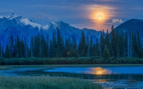 Picture forest, mountains, lake, the moon, Canada, the full moon, Vermillion Lake