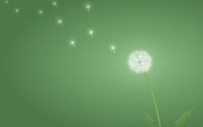 Picture green, minimalism, Dandelion