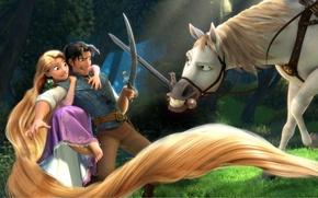 Wallpaper Rapunzel, Pascal, Maximus, Flynn, cartoon