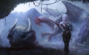 Wallpaper dragon, Cirilla, girl, Witcher 3: Wild Hunt, art, skull