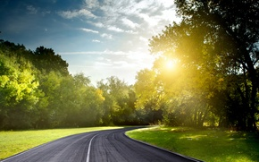 Picture road, summer, the sun, light, nature