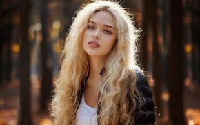 Picture autumn, portrait, mole, sunlight, natural light, Autumn portrait