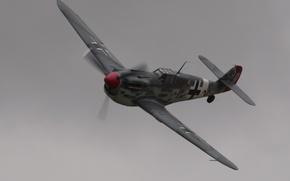 Picture Bf 109, flying, Messerschmitt